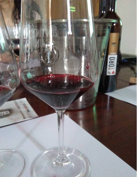 Copa de vino de Toro