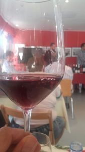 Copa vino tinto
