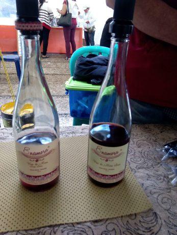 vino-de-mora2